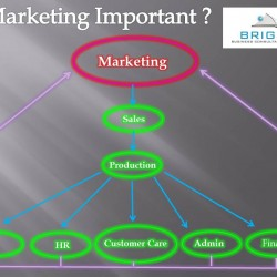 Is Marketing Important